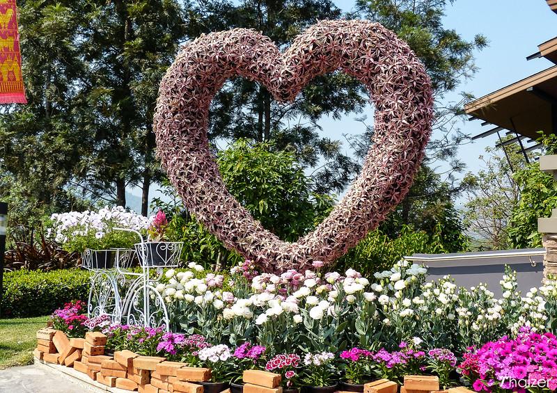 Singha Park (Boon Rawd Farm) Chiang Rai)