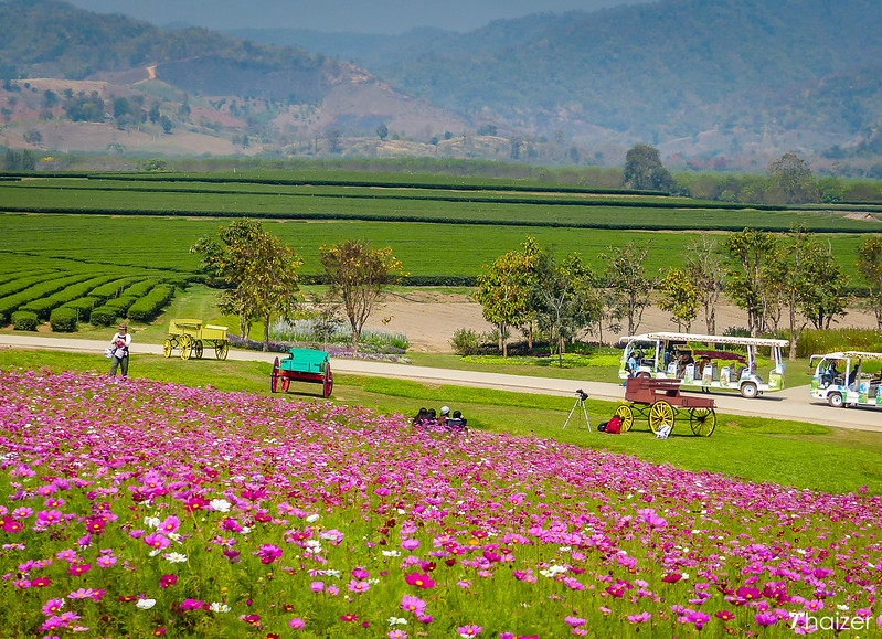 landscaped grounds at Singha Park, also know as Boon Rawd Farm