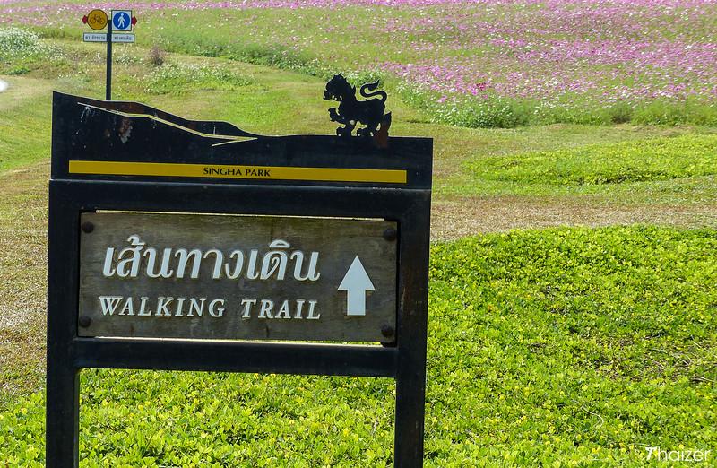 walking trail at Singha Park