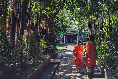 Young Monks at Wat Phra Singh