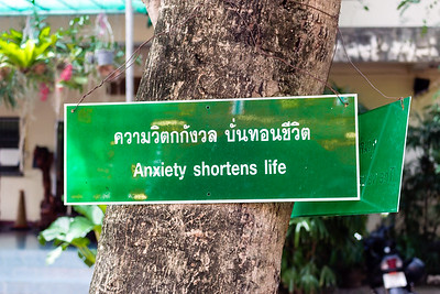 Anxiety shortens life
