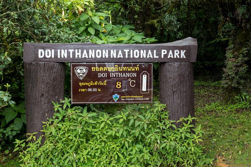 A Cool 8℃ on Doi Inthanon Mountain