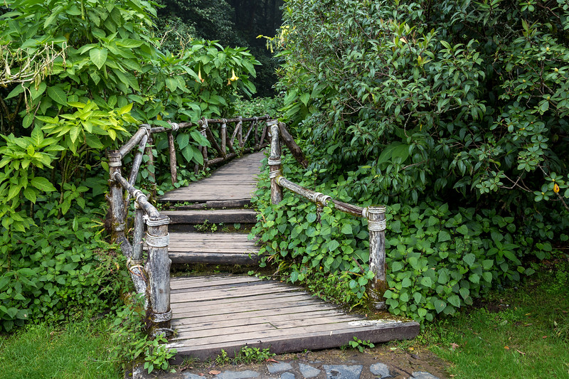 Doi Inthanon Nature Trail