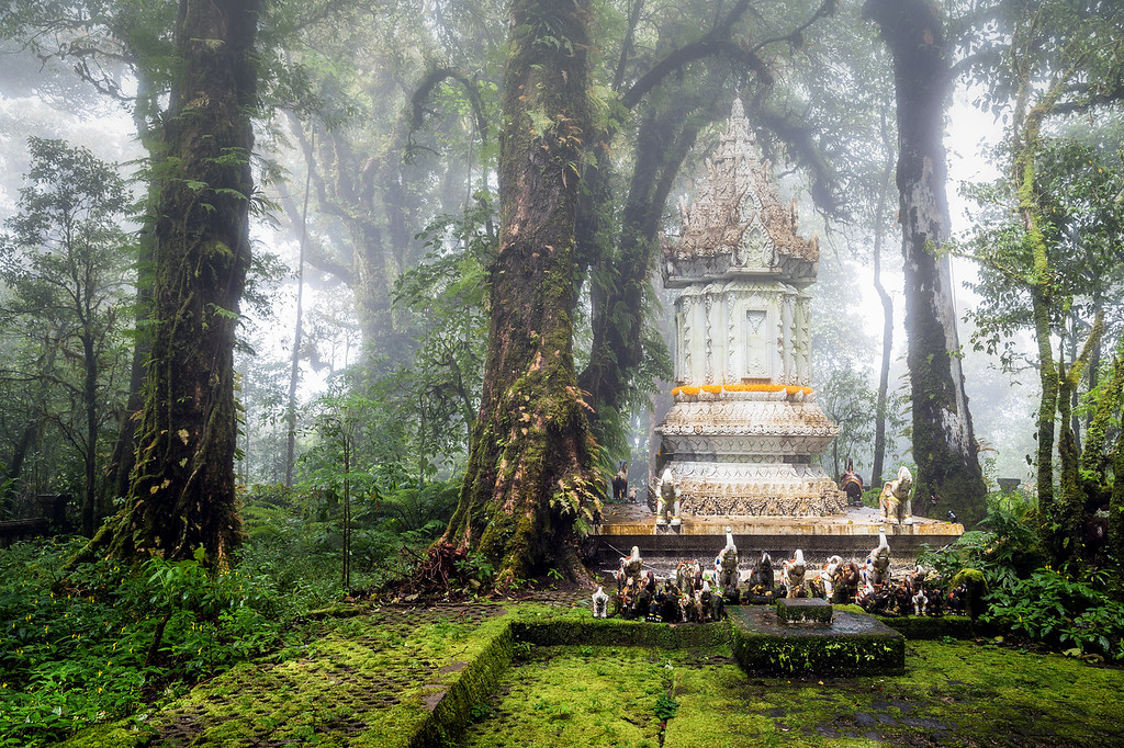 Shrine in the Misty Forest