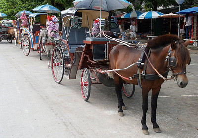 Horse and buggys in Lampang Thailand. This is the only are that has this type of trasportation