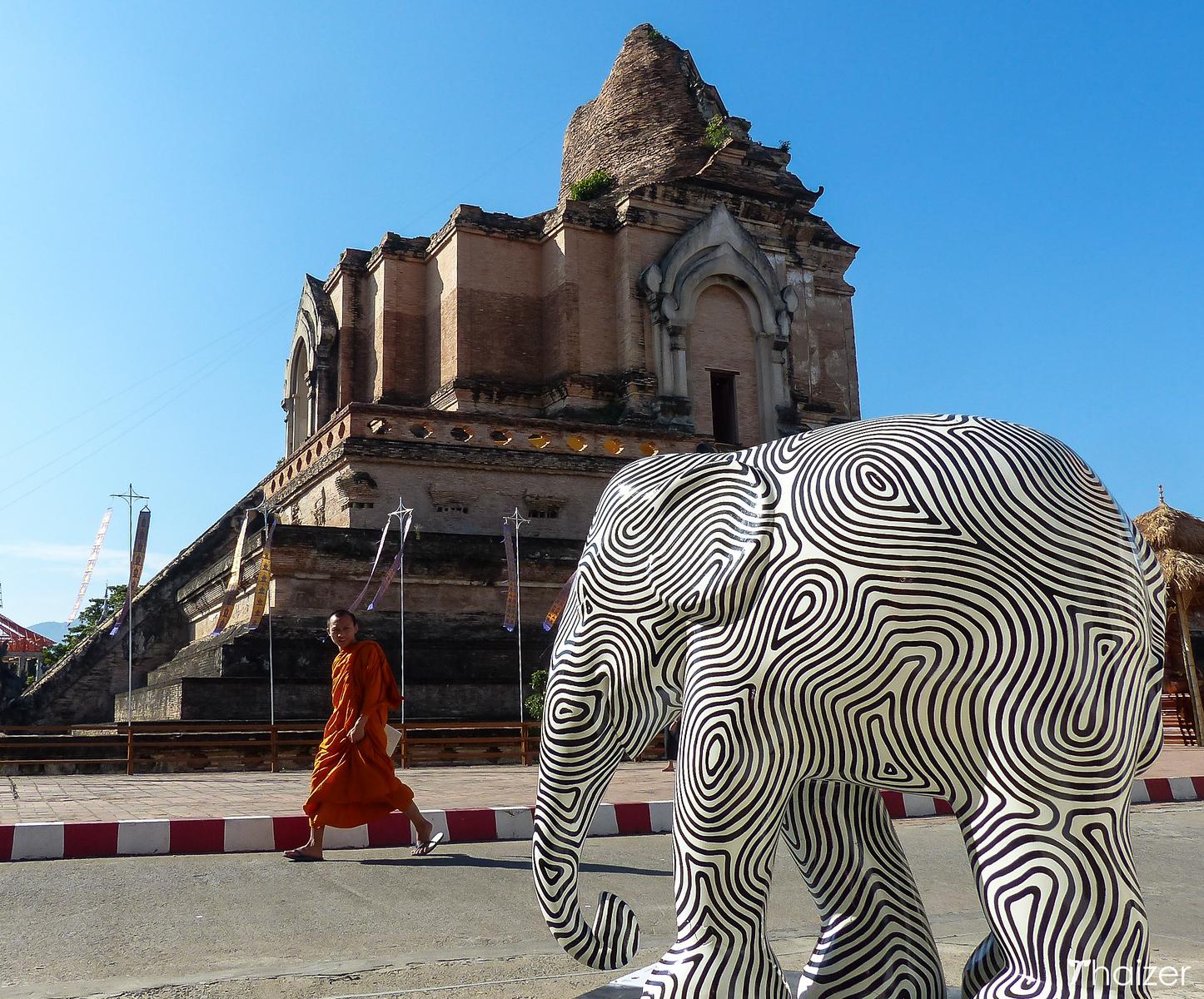 elephant and monk at Wat Chedi Luang, Chiang Mai