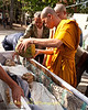 A Novice Monk Pours Coconut Water On the Corpse