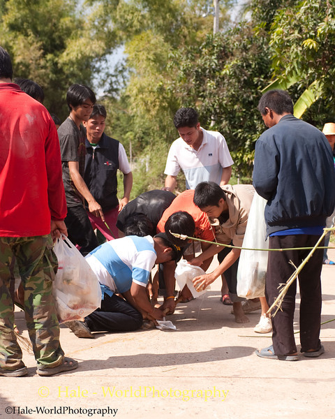 Villagers Capture Still Another Phii Ling (Monkey Ghost)