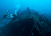 Atlantis wreck, Similan Islands, island #8, Thailand