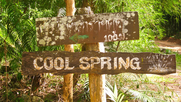 "Should be labeled ""Mosquito Spring"" - Near Khao Sok National Park, Thailand"
