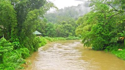 After a couple days of rain - Khao Sok National Park, Thailand