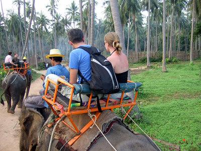 Elephant riding at Kho Samui December 2006