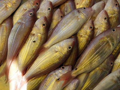 Lang Suan markets December 2006