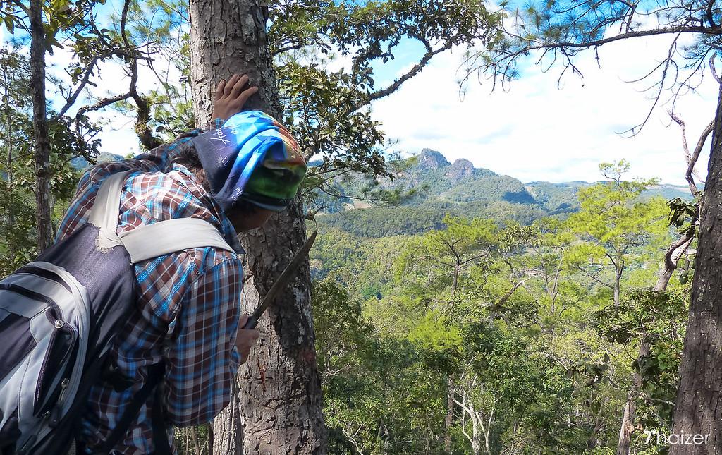Khun Rangsri chopping bark of tree