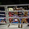 Muay Thai 1