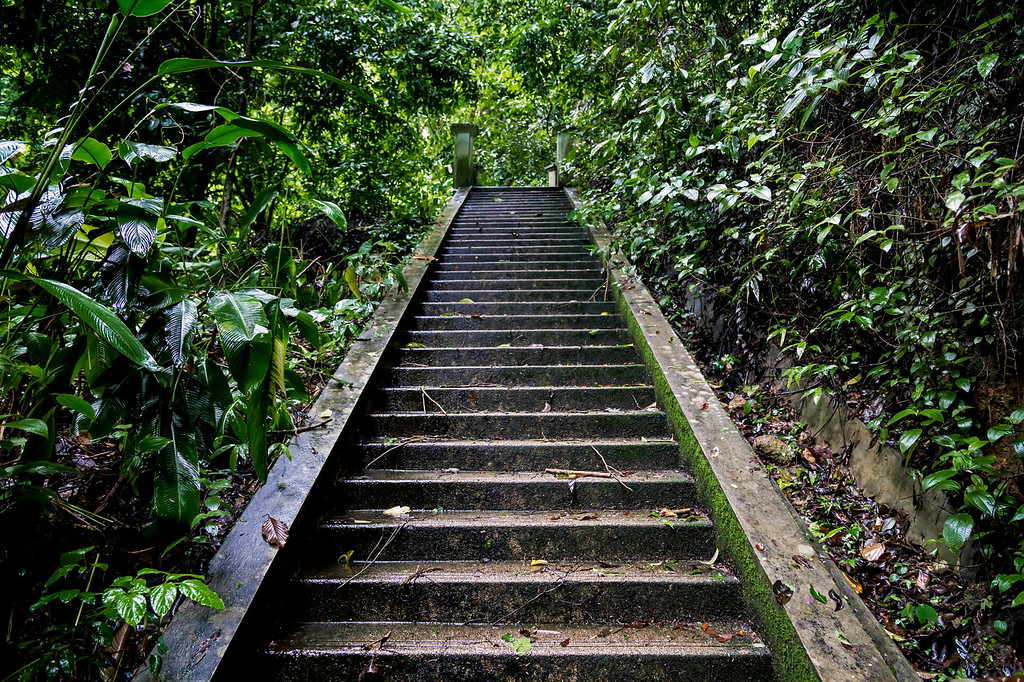 Steps leading to Kathu Waterfall