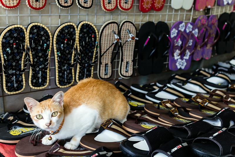 Patong Markets