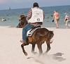 A volunteer policeman petrolling the beach on a horse at Hua Hin, October 2008