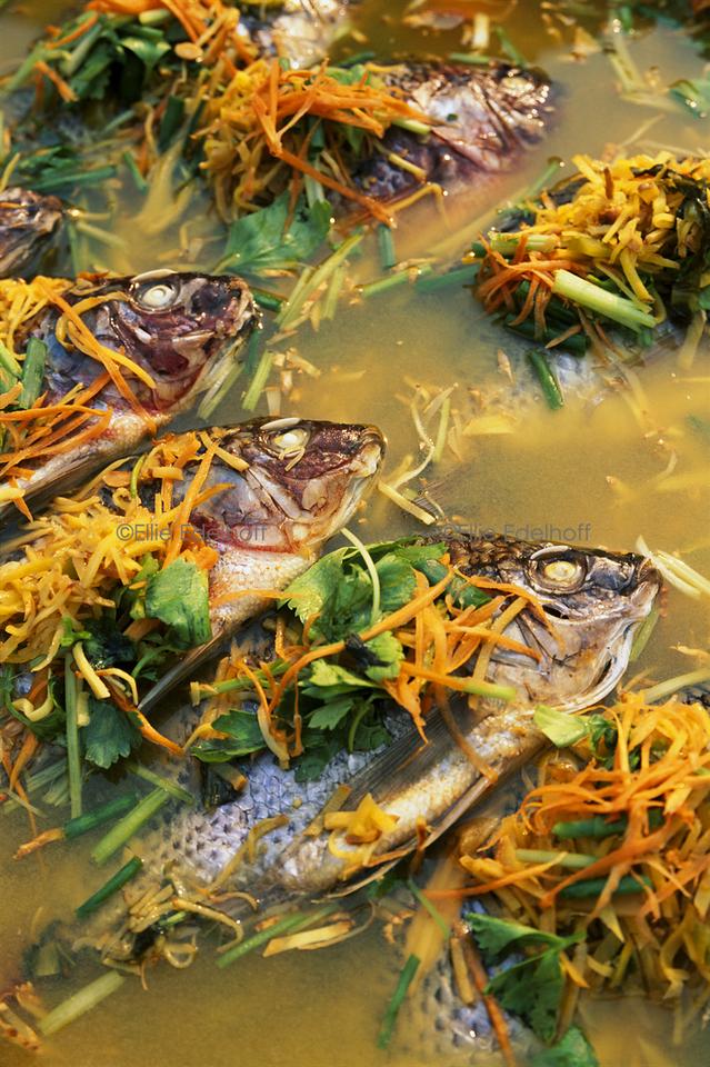 Festival Fish - Thailand