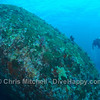 One of the giant boulders at Elephant Head Rock, Similan Islands, Thailand