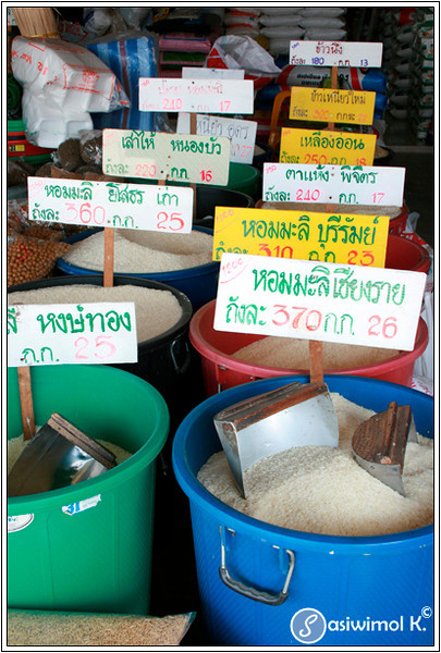 Different kinds of Thai rice