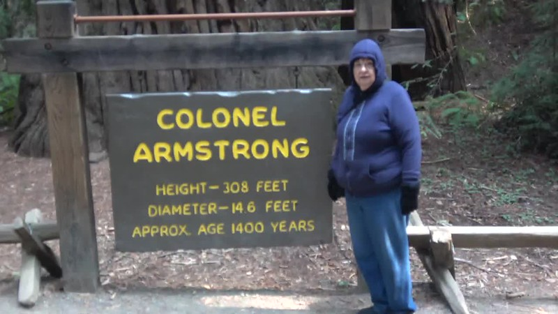 At the Armstrong Redwoods State Natural Reserve by Guerneville with my sister.  Figured out later that I had the auto focus turned off.