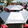 A derby umbrella hat has roses and a horse on top. Staff Photot By Josh Hicks