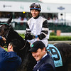 Jose Ortiz smiles aboard Limousine Liberal after the horse's track record-breaking performance in Race 2 on Toyota Blue Grass Day at the 143rd Kentucky Derby on Saturday. Staff Photo By Josh Hicks
