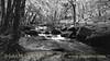 Golitha Falls, River Fowey, Cornwall - May 17, 1984