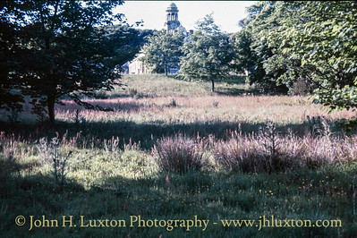 Tehidy Estate, Illogan, Cornwall - May 29, 1989