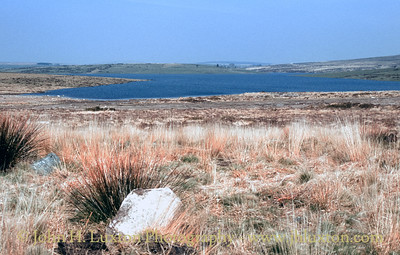 Colliford Lake, Bodmin Moor, Cornwall - April 04, 1984