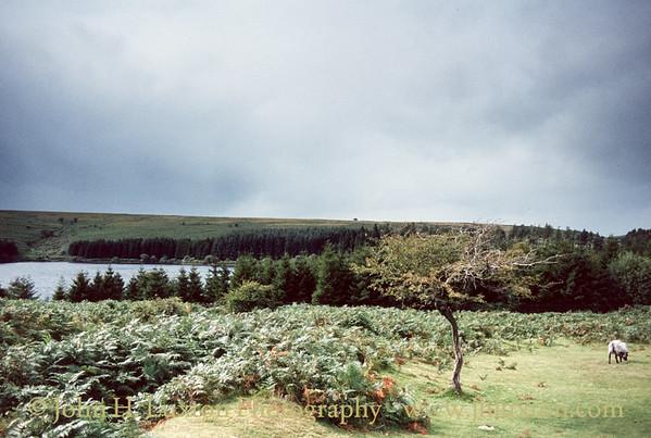 Venford Reservoir, Dartmoor, Devon - September 02, 1982