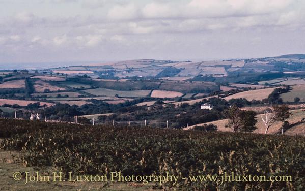Lettaford Gate, Dartmoor, Devon - August 20, 1987