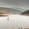 Meldon Reservoir, Dartmoor, Devon - August 18, 1983