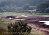 Fernworthy Reservoir, Dartmoor, Devon - August 18, 1983