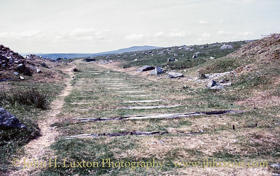 Swell Tor Quarry, Dartmoor, Devon - May 31, 1989