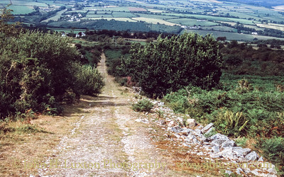 Kit Hill Quarry, Callington, Cornwall - August, 1990