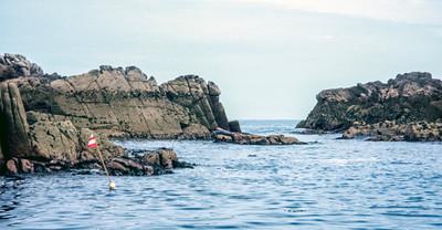 Illiswilgig, Isles of Scilly - June 04, 1993