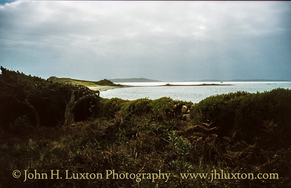 Tresco, Isles of Scilly - October 26, 2000