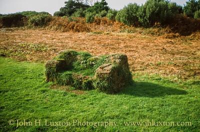 Tresco, Isles of Scilly - October 26, 1999