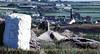 Basset Mines, Cornwall - May 30, 1989
