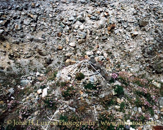 Cligga Head Mine, Cornwall - May 30, 1990