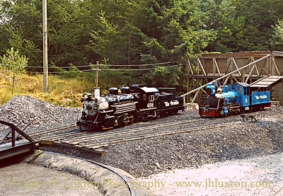 The Forest Railroad, Dobwalls, Cornwall - August 11, 1983