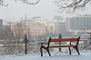 Snowy bench with a view