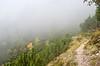 The vanishing path