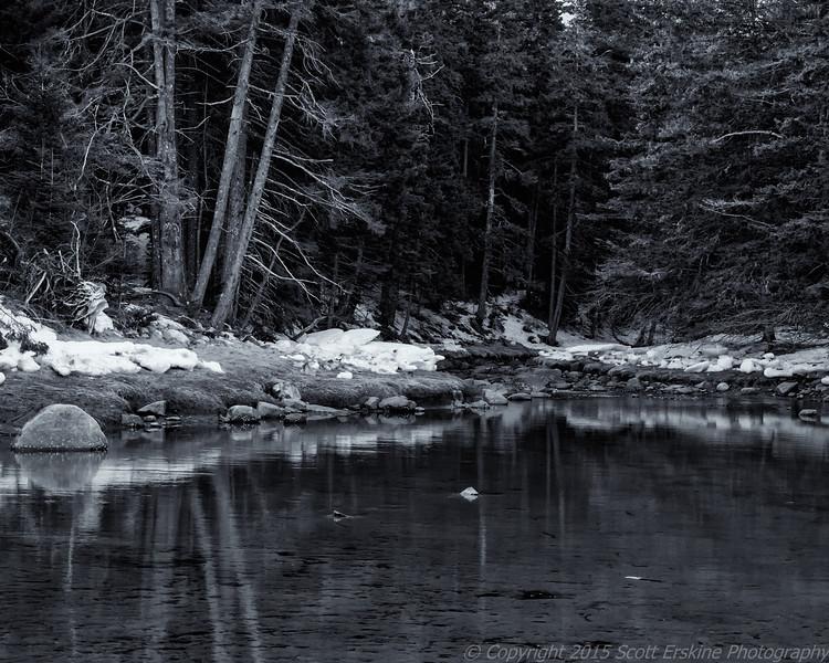Little Harbor Brook, Winter