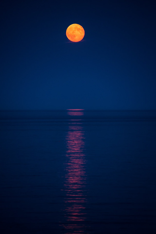 Moonrise, Gulf of Maine