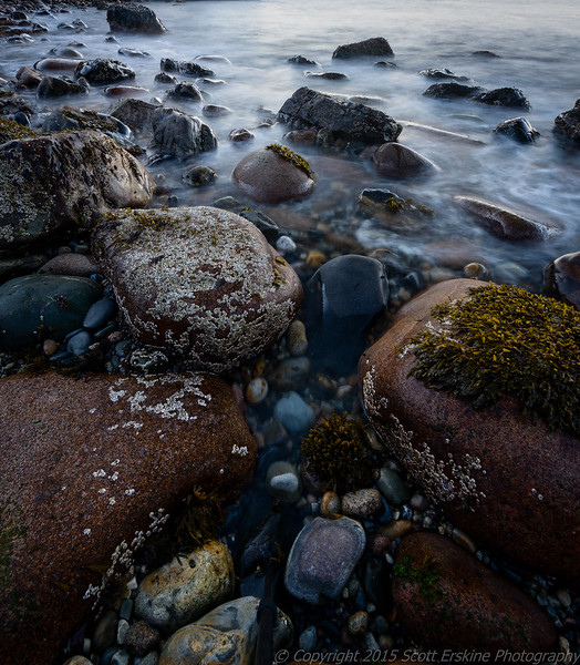 Cobbles, Rockweed, and Surf,  Sand Beach