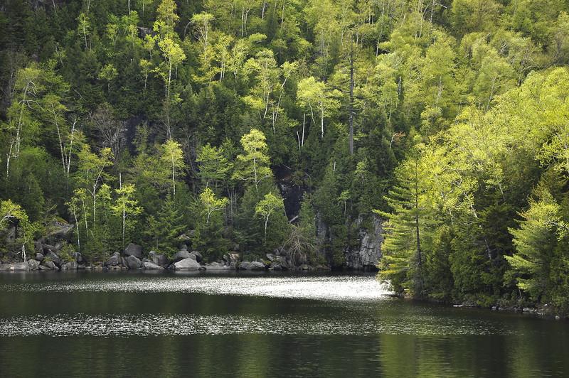 Lakes edge 2_DSC6591