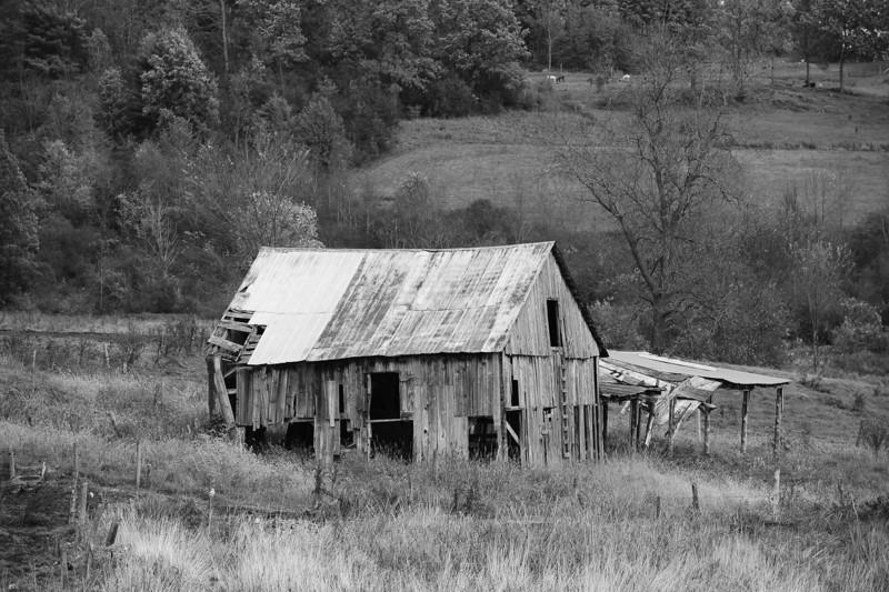 Day four Vermont 37 bw DSC_9743